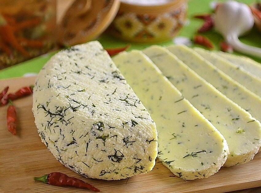 Адыгейский сыр - полезный и вкусный продукт