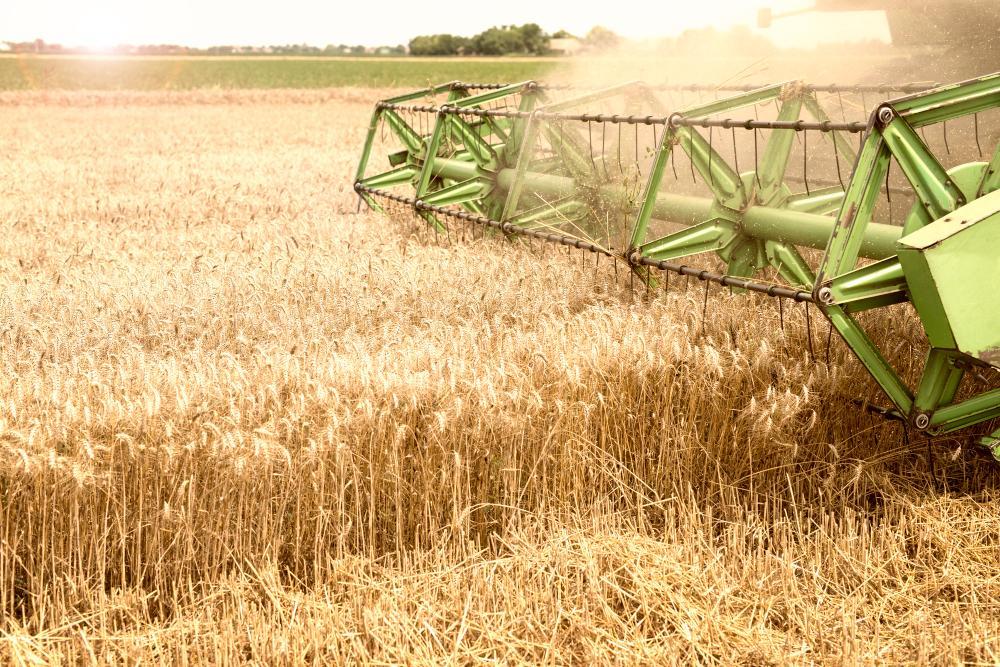 Властями Вологодской области будет выделен аграриям дополнительное финансирование в размере 272,5 млн рублей.