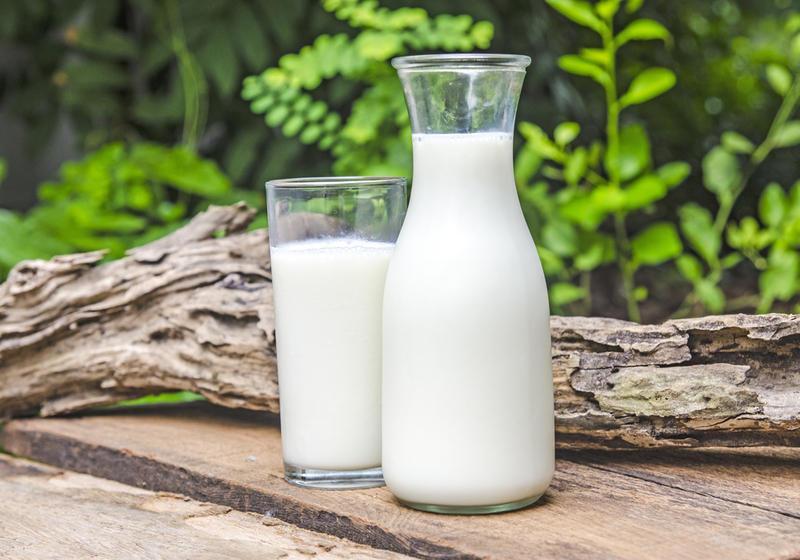 О плюсах молока и молочных продуктов
