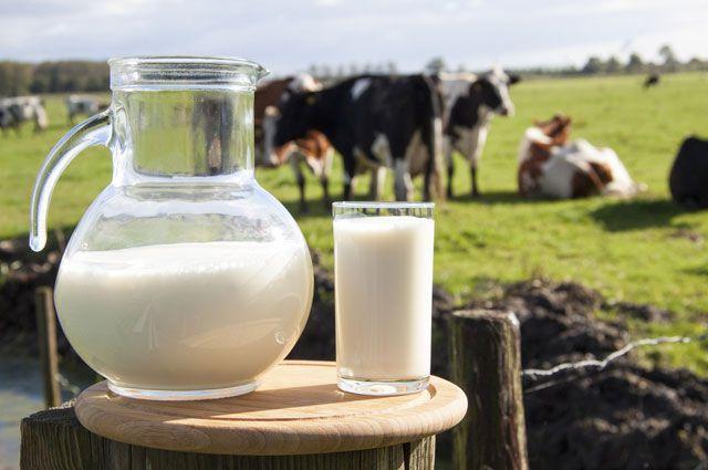 «Нева Милк» вольет миллиарды в «Северное молоко»