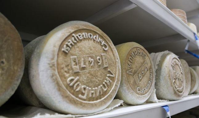Производство твердых сыров освоили вологодские фермеры, на очереди — мороженое