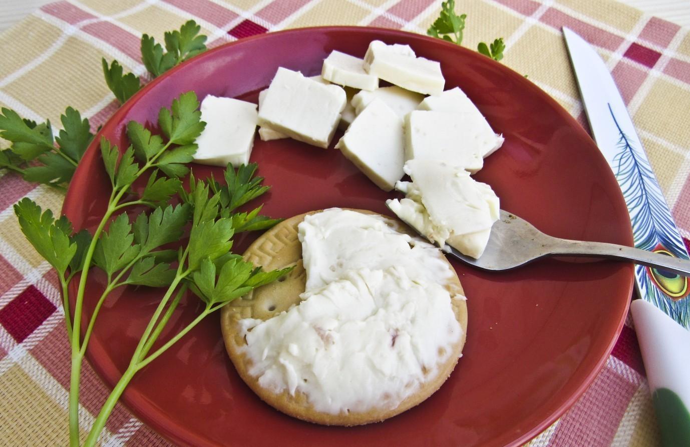 Новый способ производства плавленого сыра изобрела вологодская студентка